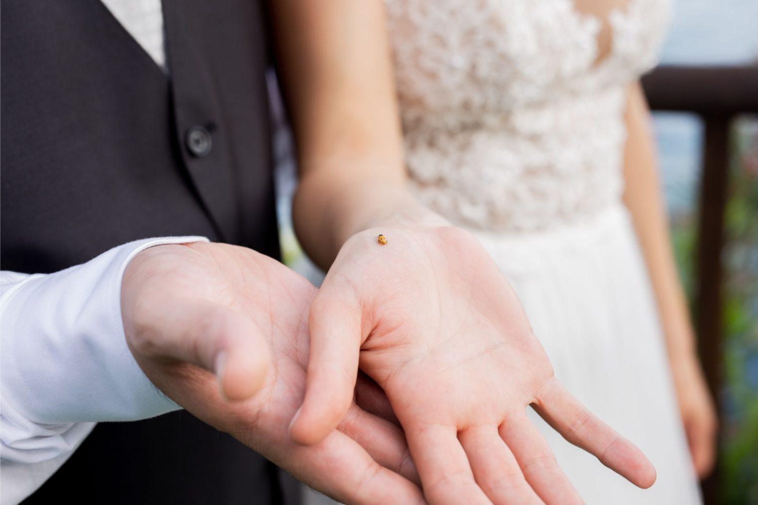 contatti | rhamely | fotografa | matrimonio | Mantova